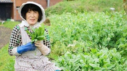 Икигай: Японский секрет долголетия и счастья