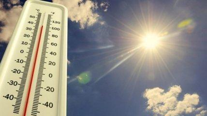 Почти 50 градусов жары: на Сицилии зафиксировали аномальную температуру