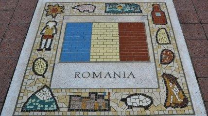 Румыния заявила о незаконном избрании спикера Сената