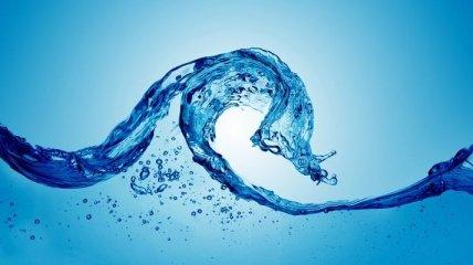 Какие продукты содержат большое количество воды (Фото)