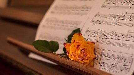 Музыкальная терапия: полезные свойства классической музыки