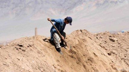 Свыше 150 миллионов детей в мире с детства работают, чтобы выжить