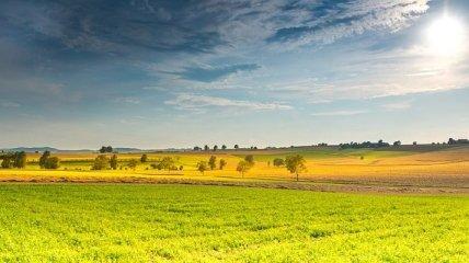 Богдан: За год возможно будет продать не более 5% земли