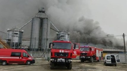 В Ивано-Франковской области горел свинокомплекс