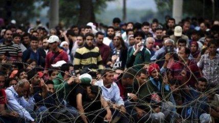 В Греции мигранты стали жертвами ложной информации