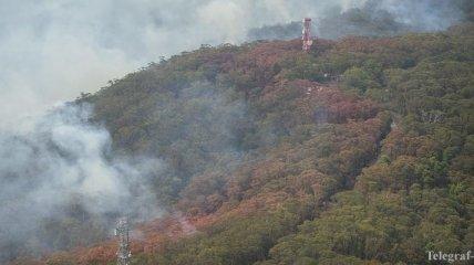 В Австралии снова могут возобновиться природные пожары