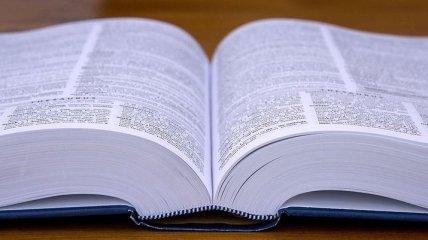 Оксфордский словарь назвал главное слово 2019 года