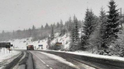 Украину посреди весны начало засыпать снегом (фото, видео)