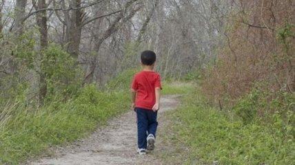 Шестилетний ребенок потерялся во время подъема на Говерлу: поиски не дают результатов