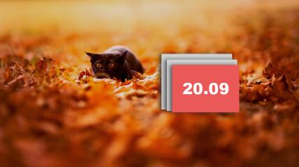 Праздник 20 сентября 2021 - Луков день