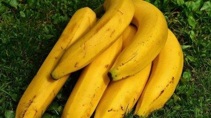 Какие фрукты и овощи надо употреблять весной?