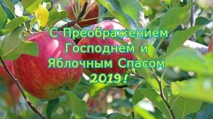 Яблочный Спас 2019: оригинальные поздравления и стихи в честь праздника