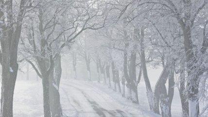 Снежная лавина в Грузии накрыла два микроавтобуса