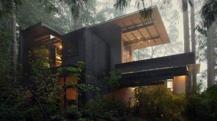 Уютный лесной домик, в котором можно отдохнуть от всей суеты (Фото)