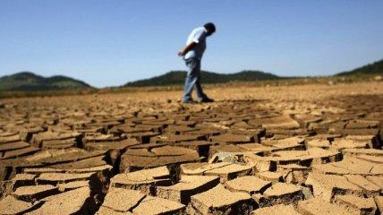 """Засуха в Китае: жара """"убила"""" почти 17 тыс га урожая в одной из провинций"""