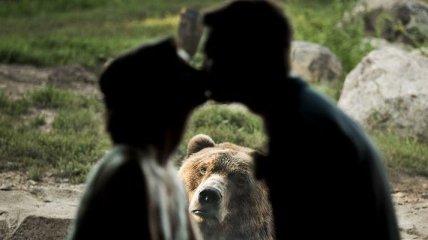 Курьез на свадьбе: медведь был против брака возлюбленных (Фото)