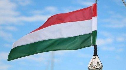 Выборы в ЕП: Венгрия проголосует за националистов, вопреки призывам Макрона