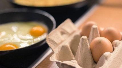 Куриные яйца: полезный продукт, помогающий похудеть без лишних усилий