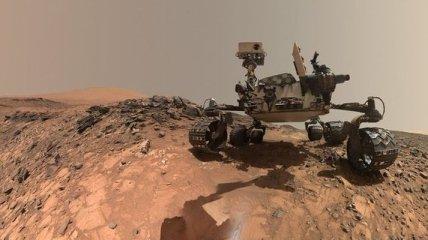 """Найдите себя: в NASA показали, как выглядит Земля """"глазами"""" марсохода Curiosity (Фото)"""
