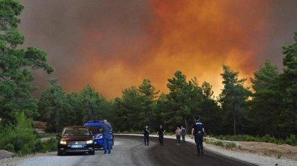 Масштабные пожары в турецкой Анталье уже привели к жертвам (фото, видео)