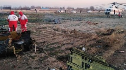 В Иране арестовали человека, опубликовавшего видео попадания ракет в самолет МАУ