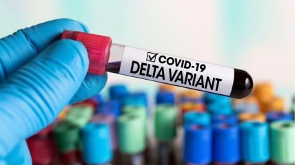 Дельта-штамм отличается от первого варианта коронавируса