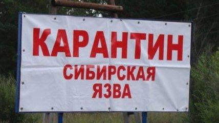 И еще одна напасть в 2020 году: в Кыргызстане зафиксировали вспышку сибирской язвы