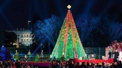 Полиция снимала мужчину с рождественской елки у Белого дома