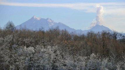 Вулкан на Камчатке выбросил столб пепла в 6 километров