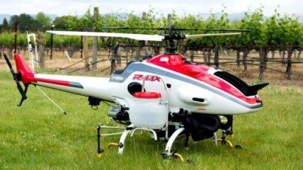 Виноделы заинтересовались радиоуправляемыми вертолетами