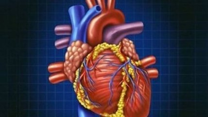 7 факторов, предупреждающих о возможном сердечном приступе