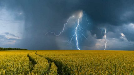 Грози з градом і спека до 34°C: якою буде погода в Україні 28 липня