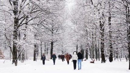 Ученые рассказали о вреде и пользе мороза для организма человека