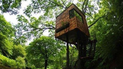Потрясающие дома мечты любителей природы (Фото)