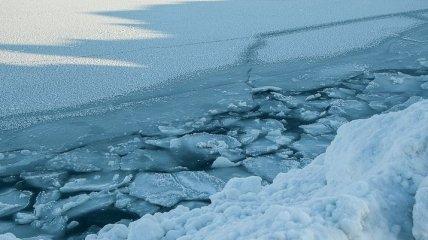 Льда не будет: Северный Ледовитый океан растает к 2050 году