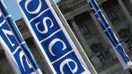 Германия начала председательствовать в ОБСЕ