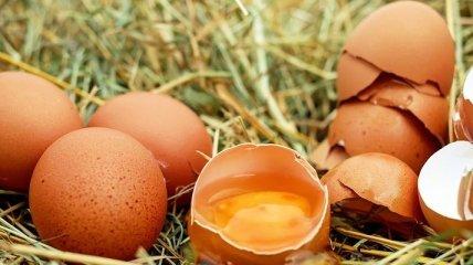 Врачи объяснили, как яйца влияют на сердце