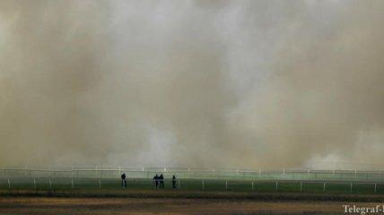 """Пожары в Австралии: ученые сомневаются в том, что естественные """"поглотители"""" углерода справятся с последствиями"""