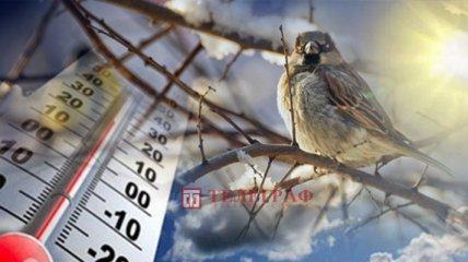 Синоптик рассказала, когда в Украину наконец-то придет потепление