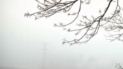 Сегодня Украину ожидает осенняя погода