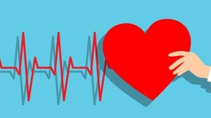 Что нужно есть, чтобы сердце было здоровым