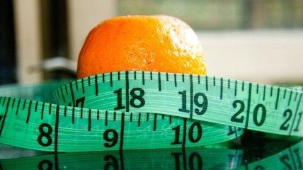 Худеем вместе: топ-10 здоровых коктейлей для похудения