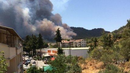Масштабные пожары охватили еще один курорт Турции: в МИД рассказали об эвакуации украинцев (видео)