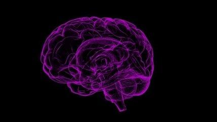 Быстро и точно: создан новый прибор для диагностики сотрясений мозга