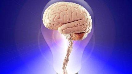 Продукты, которые способствуют развитию памяти у детей