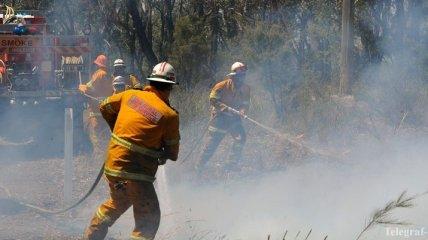 В Новой Зеландии из-за лесных пожаров эвакуировали 3 тысячи людей