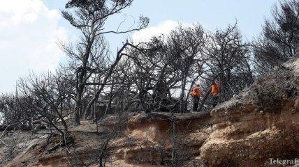Причиной смертельных лесных пожаров в Греции мог стать поджог