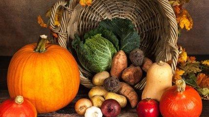ТОП-5 продуктов на осень