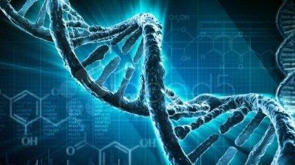 """Ученые открыли """"ген отказа от алкоголя"""""""