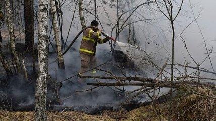 В Чернобыльской зоне спасатели ликвидировали пожар
